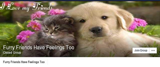 furry friends fb