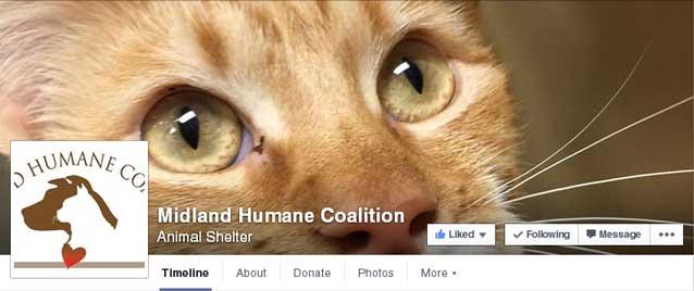midland humane co