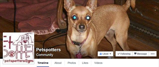 pet spotters